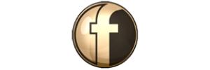 Fiberbasin Logo