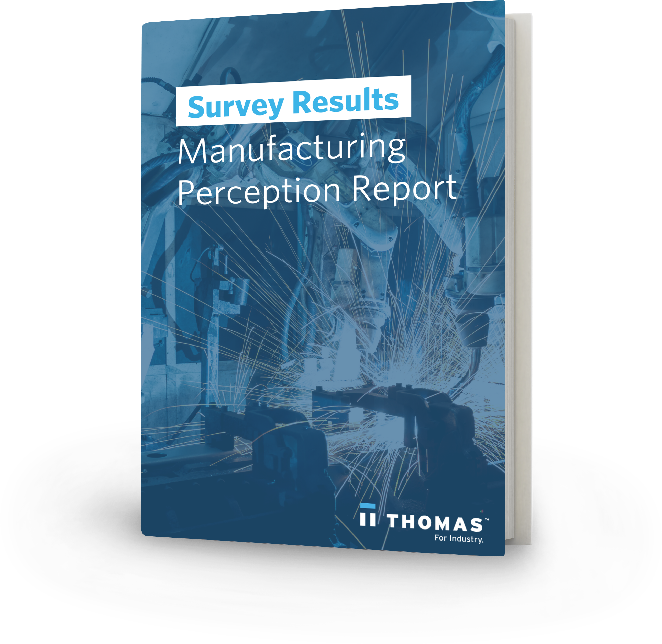 Manufacturing Perception Report Survey Results