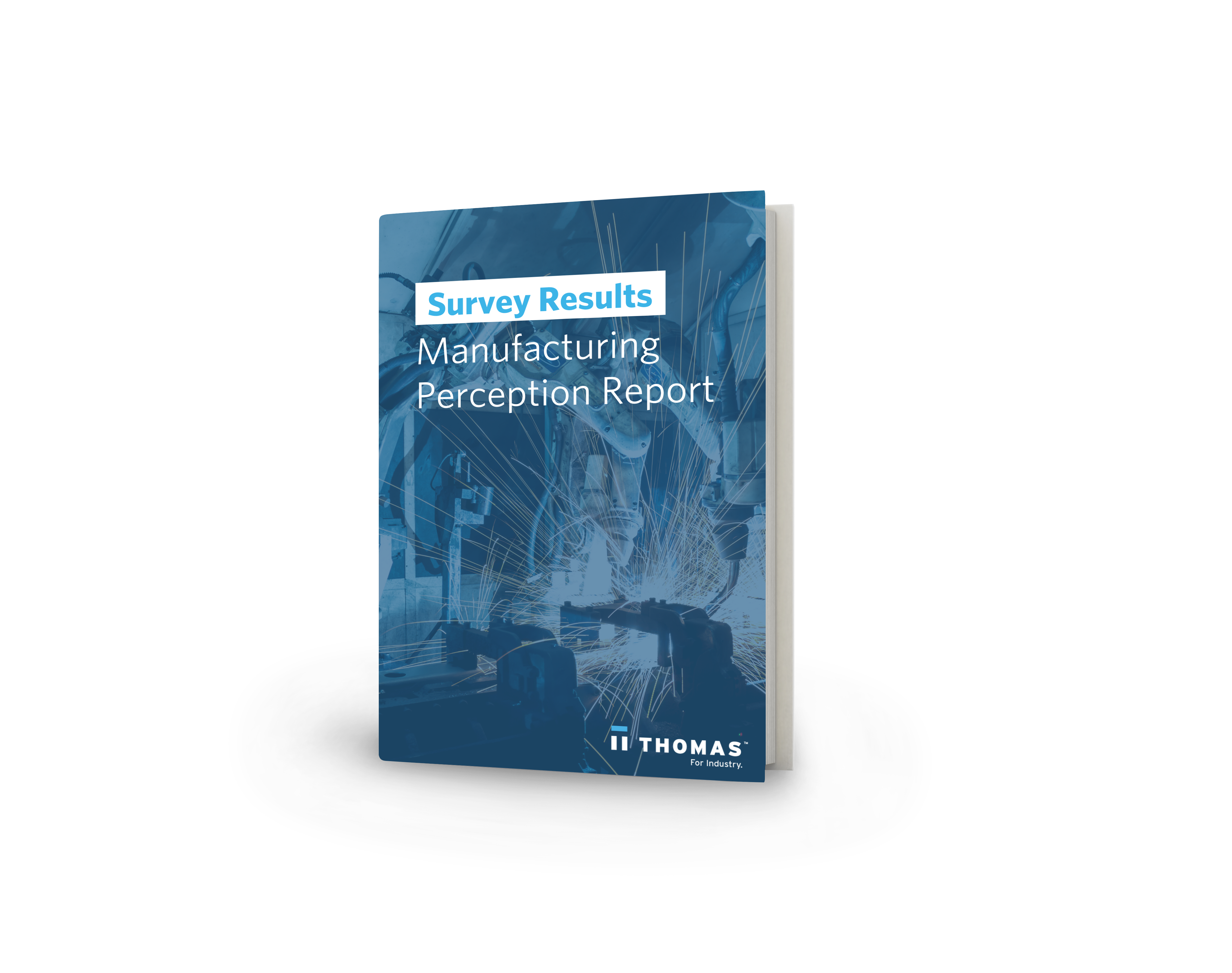 Manufacturing Perception Report